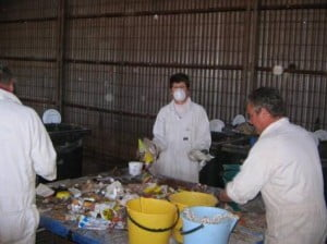 boys waste auditing imnage for waste characterisation